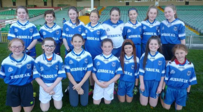 East Limerick Cumann na mBunscol 7-a-side  Girls' Gaelic Football Final