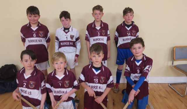 5-a-side Indoor Hurling